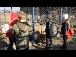 Более 270 детей из прифронтовых районов отдохнули в дни школьных каникул.