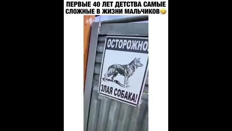 Осторожно злая собака mp4