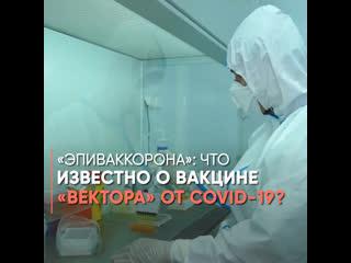 «ЭпиВакКорона»: что известно о вакцине «Вектора» от COVID-19?