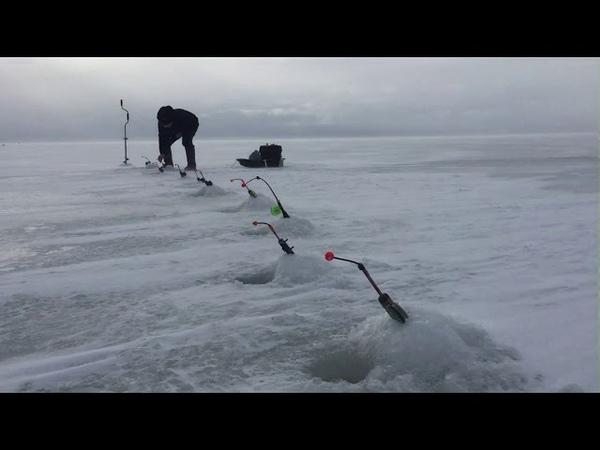Корюшка Санкт Петербург Финский залив Дамба 2019