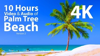 4K UHD 10 hours - Tropical Beach & Gentle Lapping Waves - mindfulness, relaxing, meditation, nature