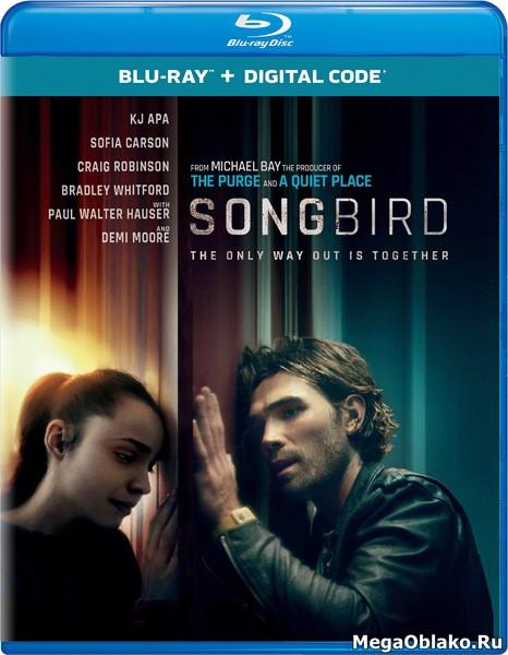 Птица в клетке. Заражение / Songbird (2020/BDRip/HDRip)