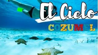 🌟 TOUR EL CIELO COZUMEL CUANTO CUESTA? QUE INCLUYE?, DESDE CANCUN O PLAYA CARMEN