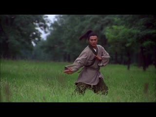 Jet Li in The Tai-Chi Master