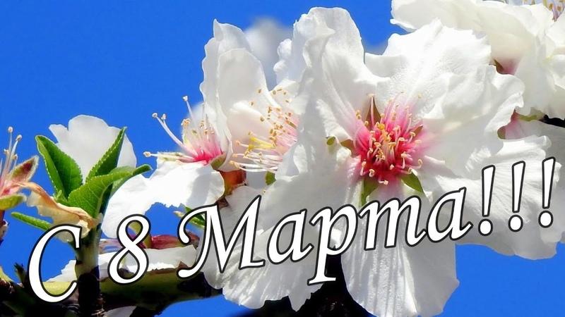 🌹🌹ОБАЛДЕННАЯ КРАСИВАЯ ОТКРЫТКА НА 8 МАРТА 🌷🌻Супер поздравление 🌺🌹С Международным женским днем🌼🌸