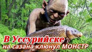 КЛЕВАЯ РЫБАЛКА В УССУРИЙСКЕ * НА САЗАНА КЛЮНУЛ МОНСТР