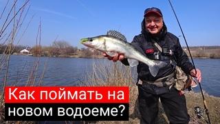 Как искать и поймать рыбу на новом водоёме? Рабочие приманки и проводки. [Спиннинг Arion 832 LS]