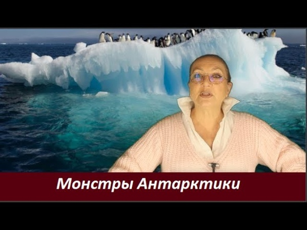 Монстры Антарктики № 2389