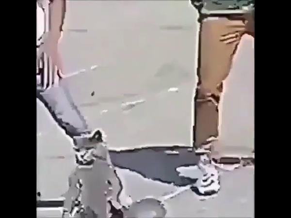 Pici dance