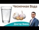 Польза Чесночной Воды Как Приготовить Чесночную Воду Доктор Вивек