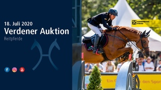 Verden Auction on July, 18th - Free jumping test of jumping horses (Friday, July 17)