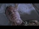 Фильм фантастика про инопланетян. Похитители тел