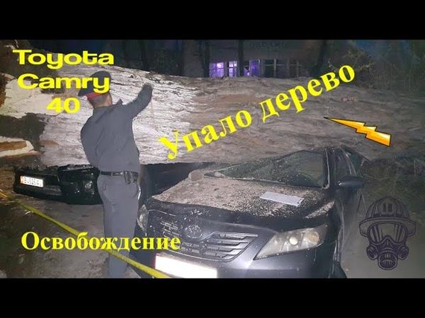 Упало дерево на Toyota Camry 40. Освобождение Эпизод 5