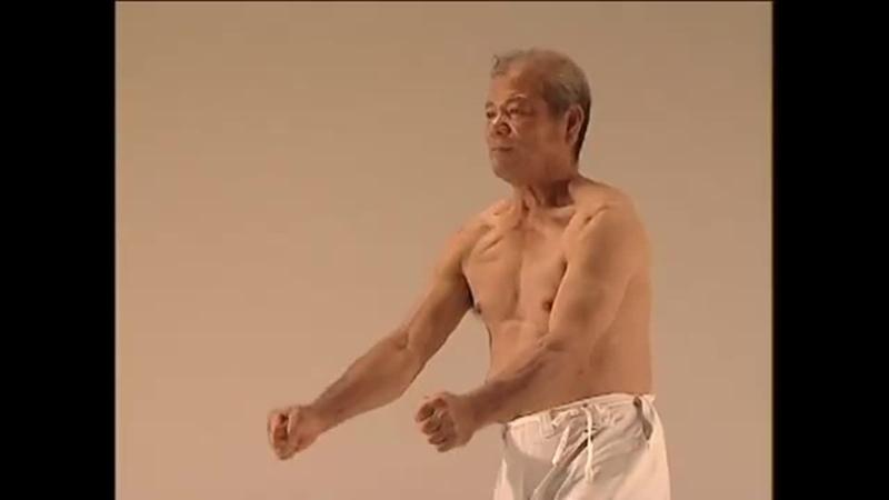 Uehara Isamu Uechi-Ryū Karate-Dō Shinkokai Shūbukan Vol 2