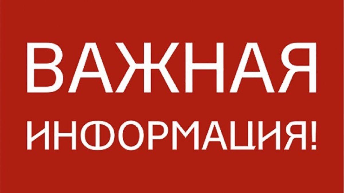 Завтра в Петровске будет производиться отлов бездомных животных