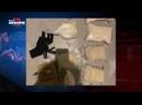 В Пыть-Яхе за контрабанду наркотиков задержали двух молодых людей