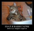 Персональный фотоальбом Данила Вольфа