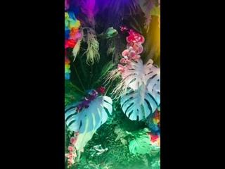 Пляжная вечеринка, фотозона на день рождения
