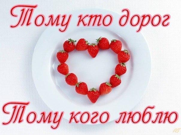 фото из альбома Елены Савченко №1