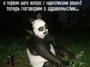 Личный фотоальбом Лили Кудрявцевой