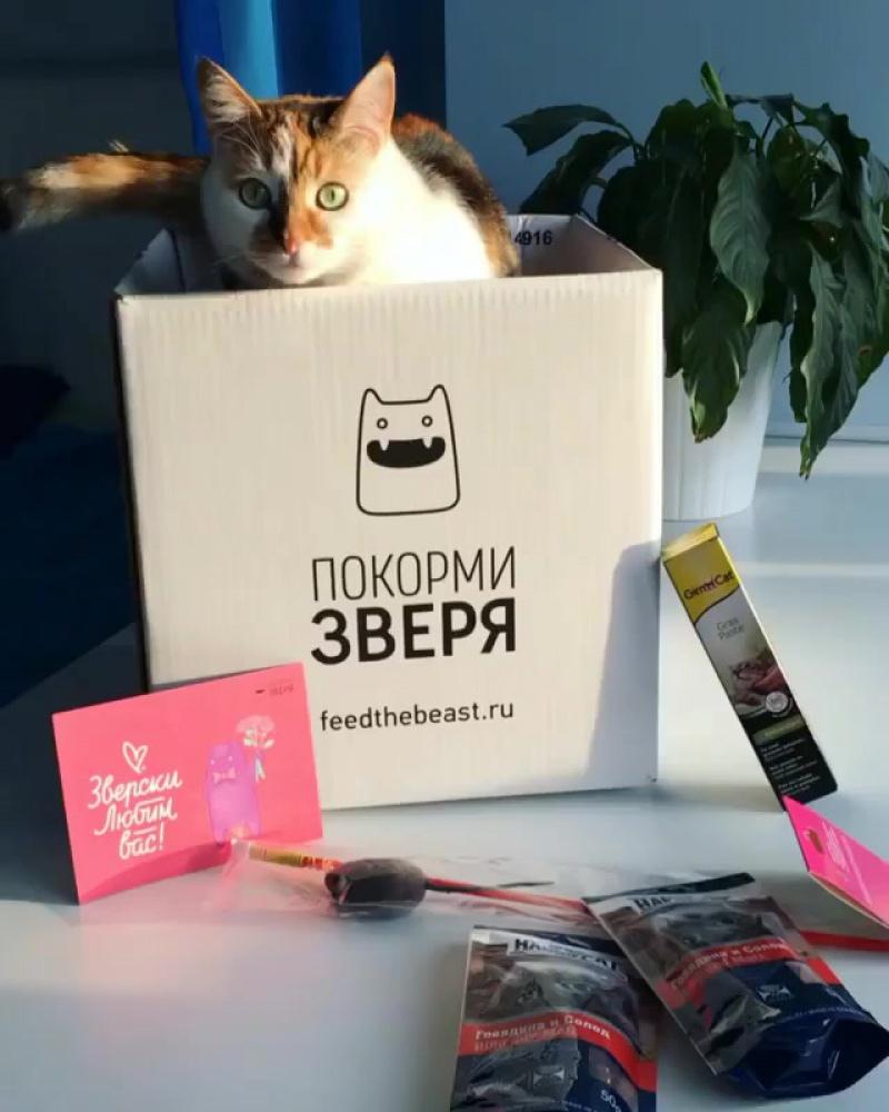 Регулярная доставка корма для кошек и собак