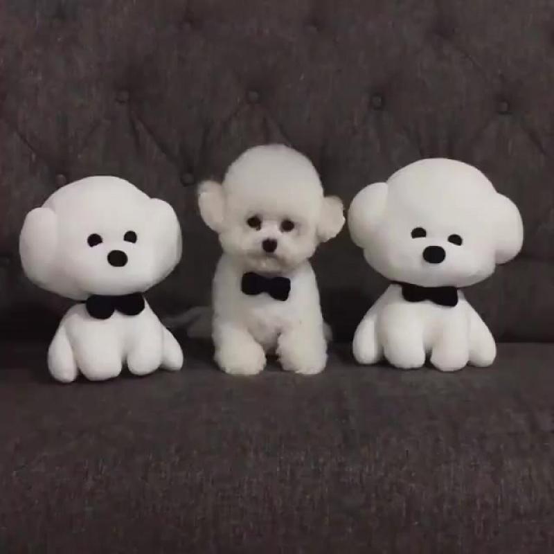 Awww How cute!👧🏼👧🏼👧
