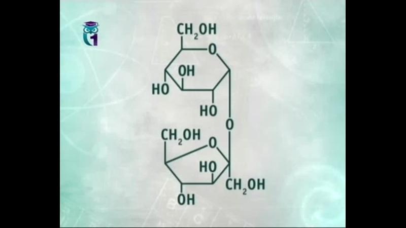 Химия для чайников. Лекция 28. Сладости и сласти. Сахара