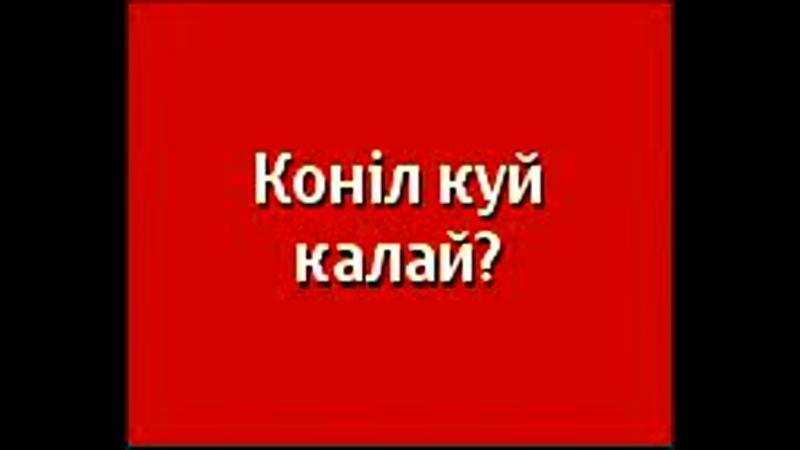 Көңіл күй қалай_.mp4