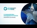 TV1000 Русское кино_Супербобровы. Народные мстители