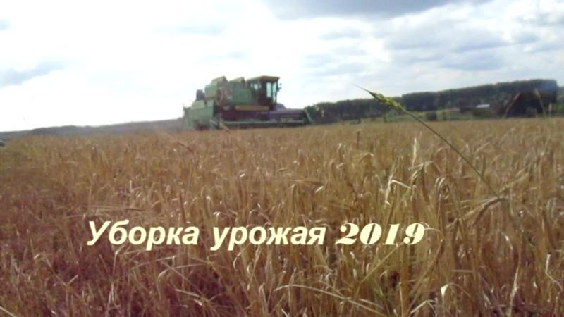 Уборка урожая 2019