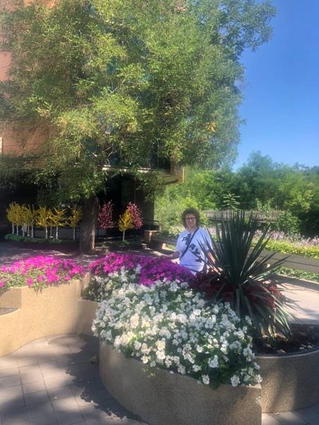 Любимые цветы в любимом Кисловодске