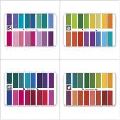 Пластиковая палитра оттенков цветотипа