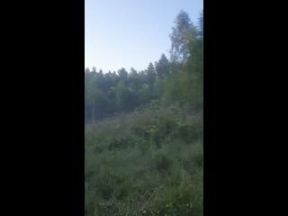 Видео от Червоны Ропейд