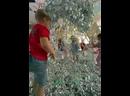 Видео от Детская Игровая комната У Карлсона на крыше