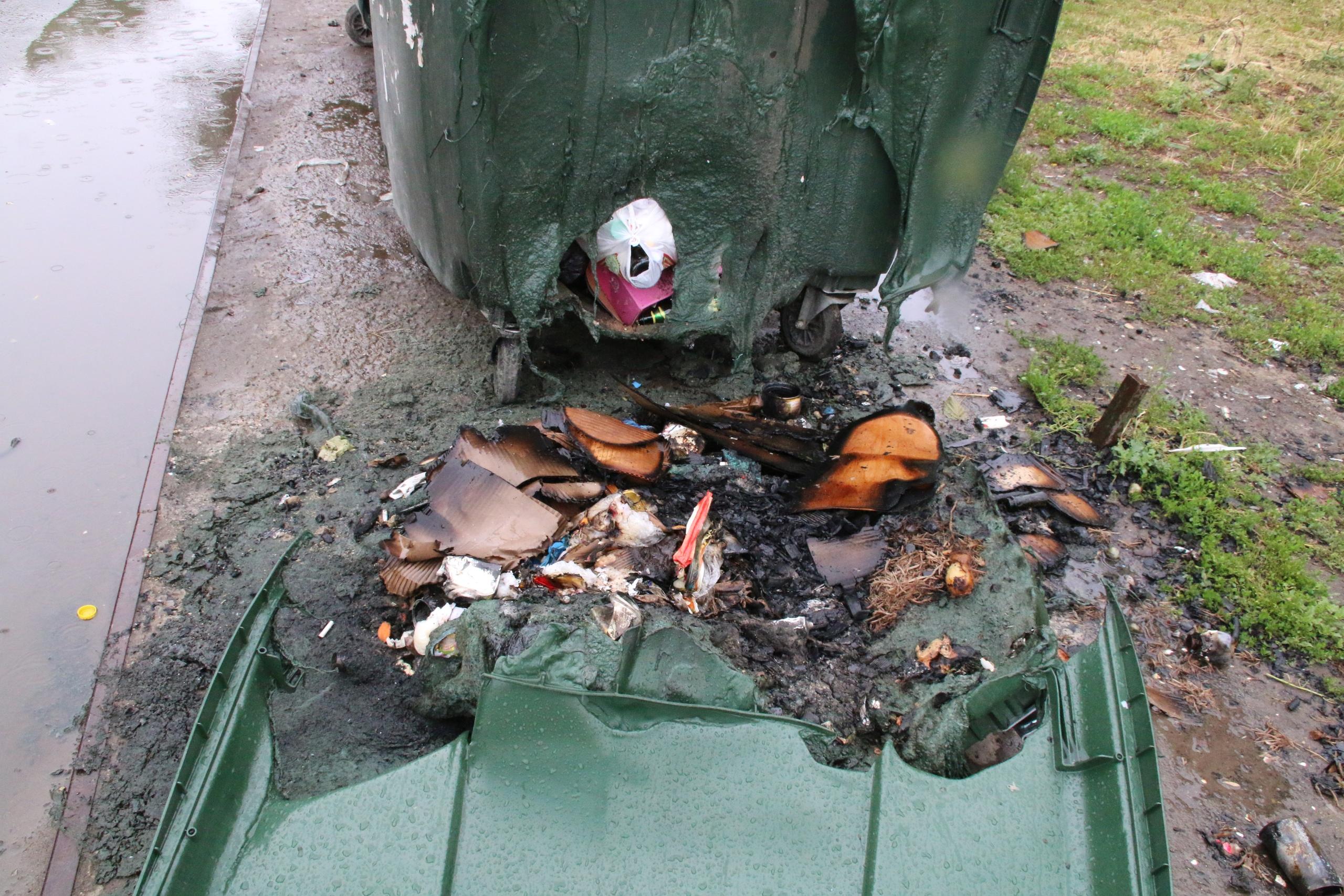 На тамбовского поджигателя мусорных контейнеров завели два уголовных дела