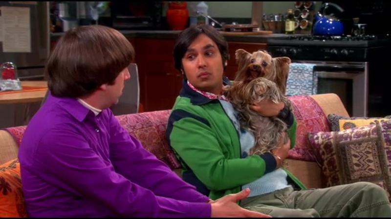 Любовный треугольник Раджеш Говард и Корица в сериале Теория Большого взрыва The Big Bang Theory Кураж Бамбей BigBangTheory