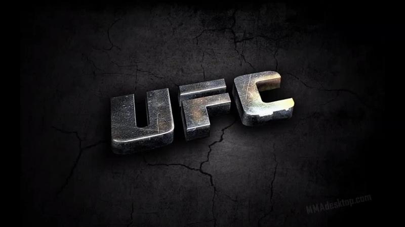 Лучший бой в UFS