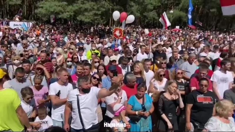 В Бресте очень много людей Из за деревьев сложно увидеть количество человек