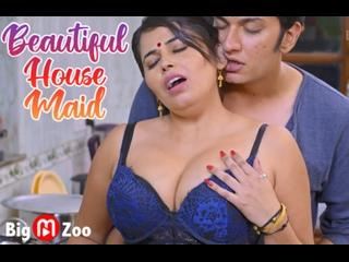 Beautiful House Maid – 2021 – Hindi Hot Web Series – BigMovieZoo