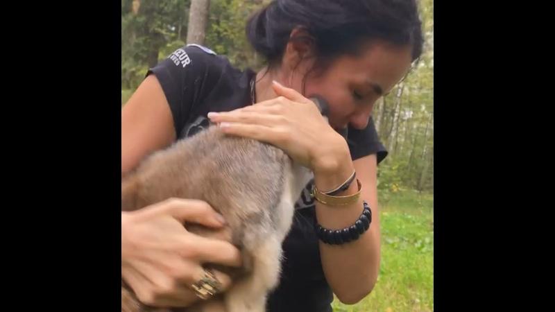Видео от Юлии Хадарцевой