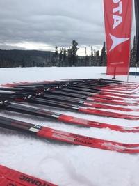 27-28 февраля на УСБ «ДИНАМО» состоятся тесты беговых лыж SALOMON и ATOMIC!