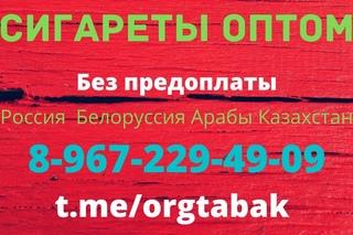 купить сигареты казахстанские в контакте
