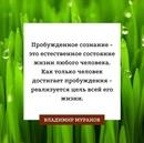 Муранов Владимир | Москва | 7