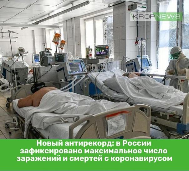 Новый антирекорд: в России зафиксировано максималь...