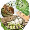 ЭКЗОТВЕРЬ: эублефары | бананоеды | вараны