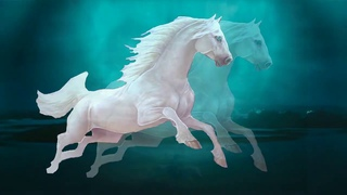 Ах эти кони -  Сергей Чернышев