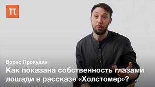 Лев Толстой против частной собственности — Борис Прокудин