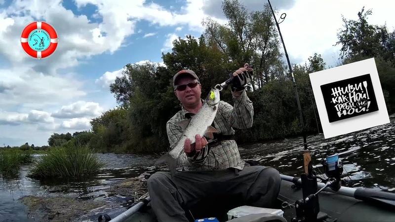 Рыбалка на нытьё. /р.Мокша/ Мордовия