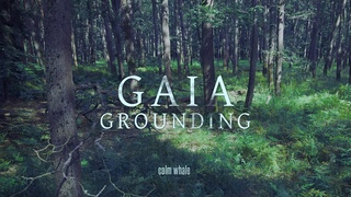 Grounding to Mother Gaia 🌍 Shaman Drum Journey, Gong & Nature ROOT Chakra Meditation Music