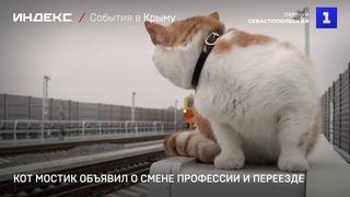Кот Мостик объявил о смене профессии и переезде